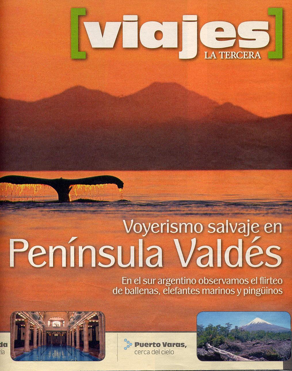Viajes La Tercera reportaje ballenas (1)