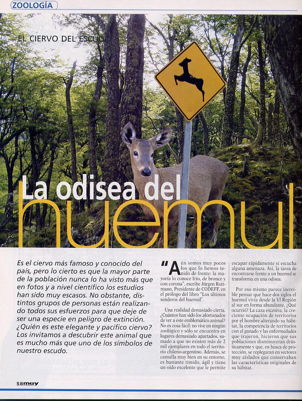 muy interesante reportaje huemul (1)